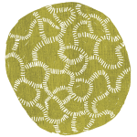 braincoral
